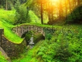 stock-photo-ancient-bridge-in-summer-forest-126732311