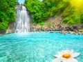 stock-photo-beautiful-lotus-flower-in-waterfall-pool-vietnam-46132399