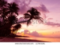 stock-photo-beautiful-tropical-sunset-with-palm-trees-silhoette-at-beach-117665281