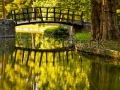 stock-photo-lovely-water-reflection-of-the-wooden-bridge-in-the-topcider-park-belgrade-serbia-139120418