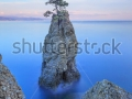 stock-photo-portofino-natural-regional-park-lonely-pine-tree-rock-and-coastal-cliff-beach-long-exposure-124516282