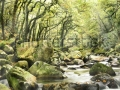 stock-photo-river-plym-in-dartmoor-39320317