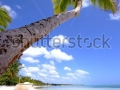 stock-photo-tropical-beach-54893089