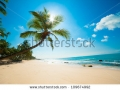 stock-photo-untouched-tropical-beach-in-sri-lanka-109674992-1