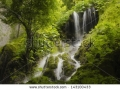 stock-photo-waterfall-and-dense-vegetation-in-green-forest-143100433