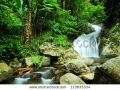 stock-photo-waterfall-in-deep-forest-113835334