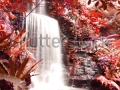 stock-photo-waterfalls-in-deep-forest-autumn-season-68462236