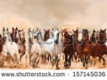 stock-photo-horses-herd-running-in-the-sand-storm-157145036