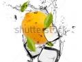 stock-photo-lemon-with-ice-cubes-isolated-on-white-background-131855000