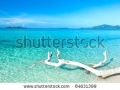 stock-photo-tropical-beach-malcapuya-at-summer-sunny-day-panorama-84631399