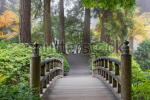 stock-photo-foggy-morning-by-wooden-foot-bridge-at-japanese-garden-in-autumn-88481698