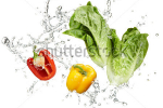 stock-photo-fresh-vegetables-and-water-splash-on-white-background-38902384