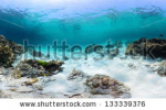 stock-photo-panorama-of-a-tropical-reef-with-rocks-on-a-sandy-bottom-racha-yai-island-thailand-133339376